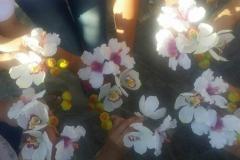 III hartai cukorvirag tanfolyam - Fuzesi Papa Vendeghaza - Harta (04)